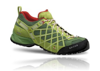 salewa wildfire